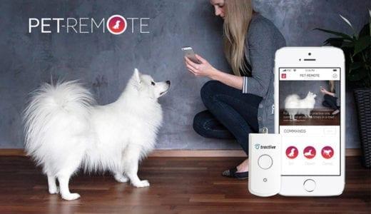 愛犬をスマホアプリを使ってしつけができる時代に突入!犬の首輪に装着するPet-Remote