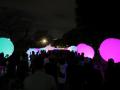 上野公園で開催されたTOKYO数寄フェスへ行ってきた