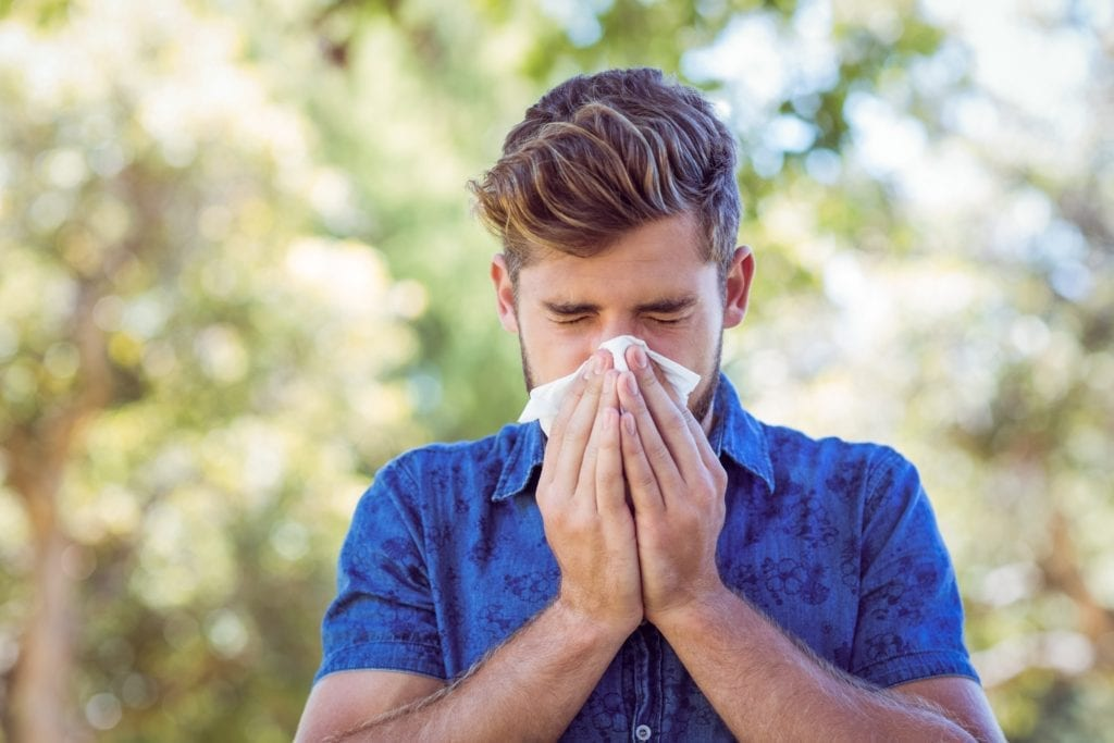 アレルギー検査 血液