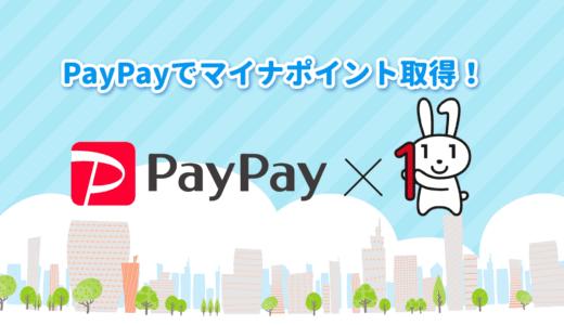 【前編】PayPayを使って5000円分のマイナポイント取得手続き方法を詳しく解説