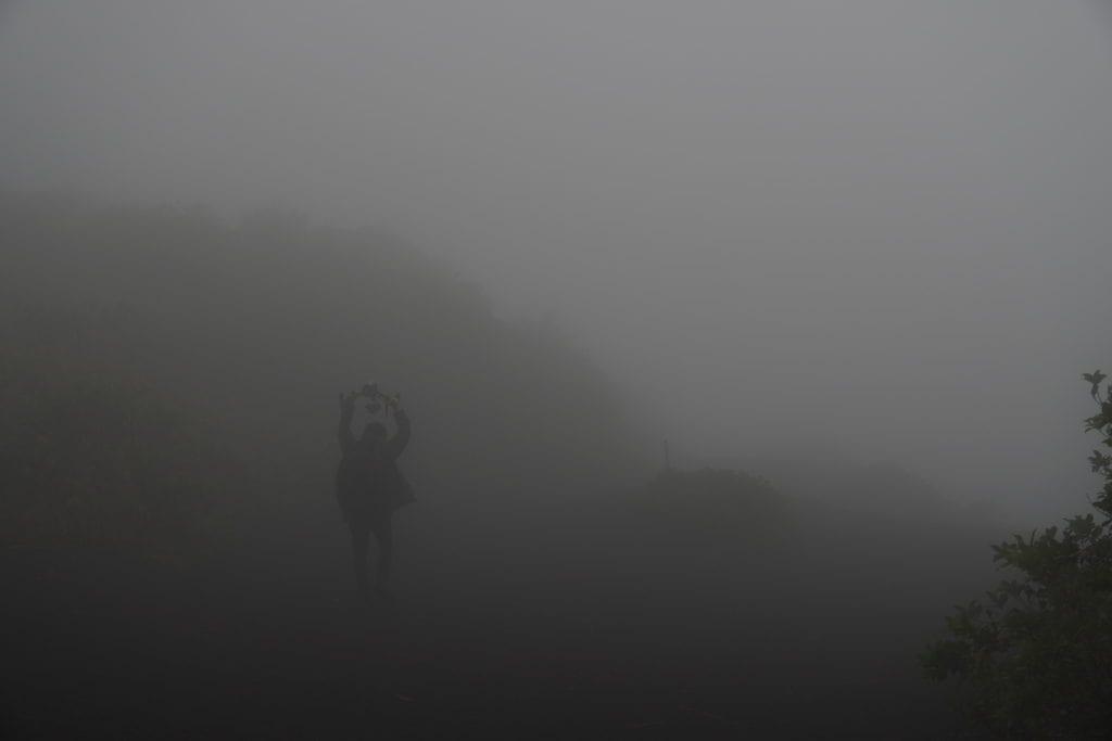 霧の伊豆大島